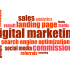 Strategies Used By A Digital Marketing Consultant to Get Leads
